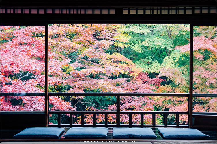 京都自由行︱走進畫框中的絕美楓景.八瀨大原 琉璃光院(2016開放日期)