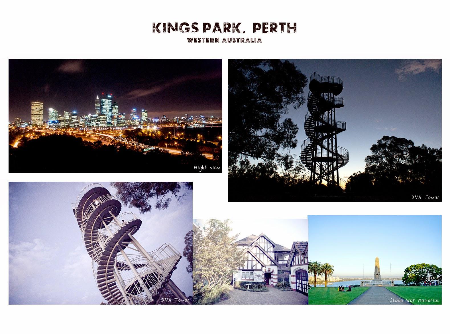 西澳旅遊|Perth Kings Park 國王公園.遠眺西澳城市最美夜景