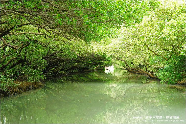 安南區旅遊丨台南四草大眾廟之綠色隧道.天使之吻的台版亞馬遜河