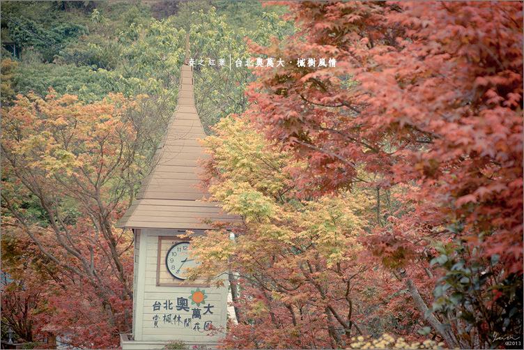 士林旅遊︱台北奧萬大.走入春之紅葉的悠閒