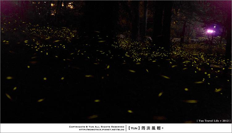 旅行︱新北烏來.雲仙樂園~2012螢火蟲季 (2012.05.22新增影片檔)