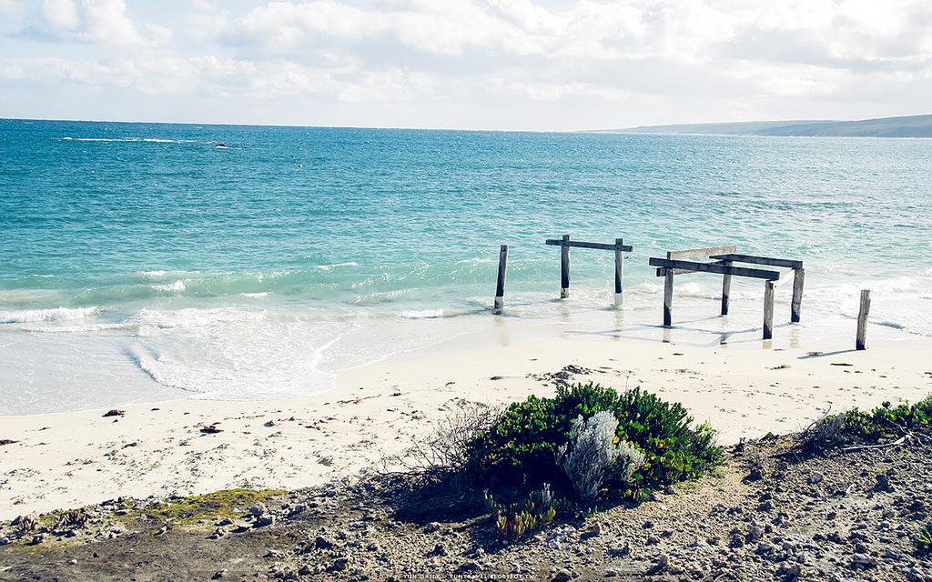 西澳自由行︱Hamelin Bay.印度洋上的浪漫海洋攝影場景.