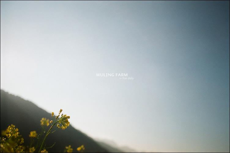 2013 Wuling farm@film