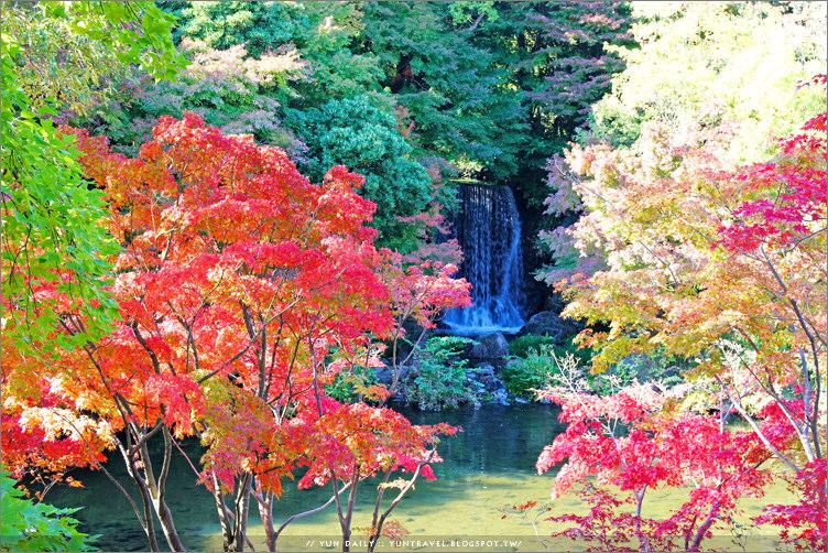 大阪自由行︱萬博紀念公園.自然文化園泡足湯、賞紅楓