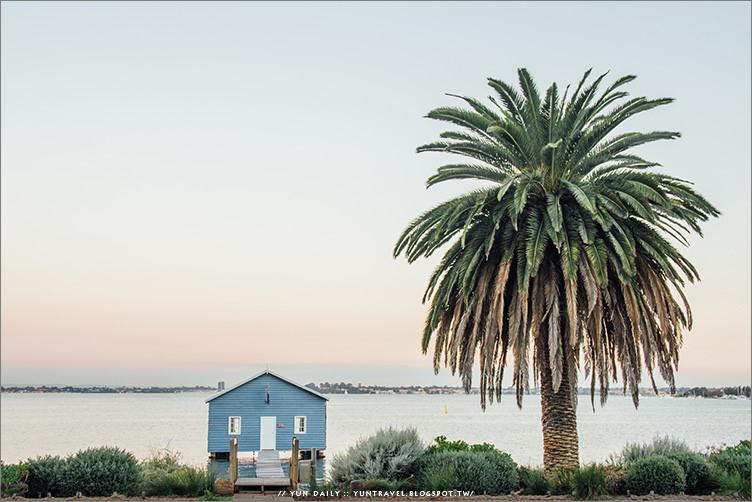 西澳旅遊︱藍色小屋.伯斯必遊城市景點、天鵝湖黃昏好迷人