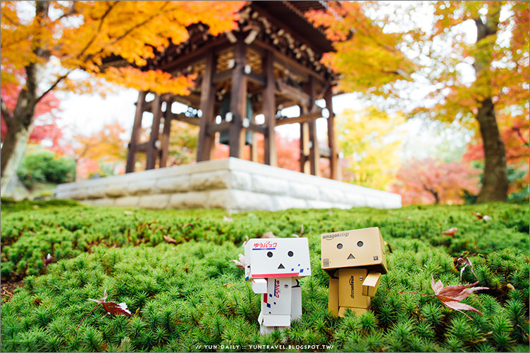 京都自由行 ︱智積院.市區行程、遠離喧囂的楓景好去處