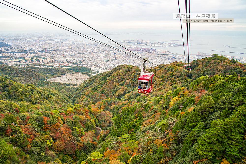神戶自由行︱摩耶山纜車.置身在美麗的楓之山谷