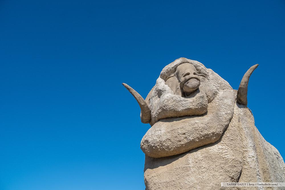 NSW自由行︱Goulburn.濃濃歐風小鎮中發現超可愛巨大棉羊