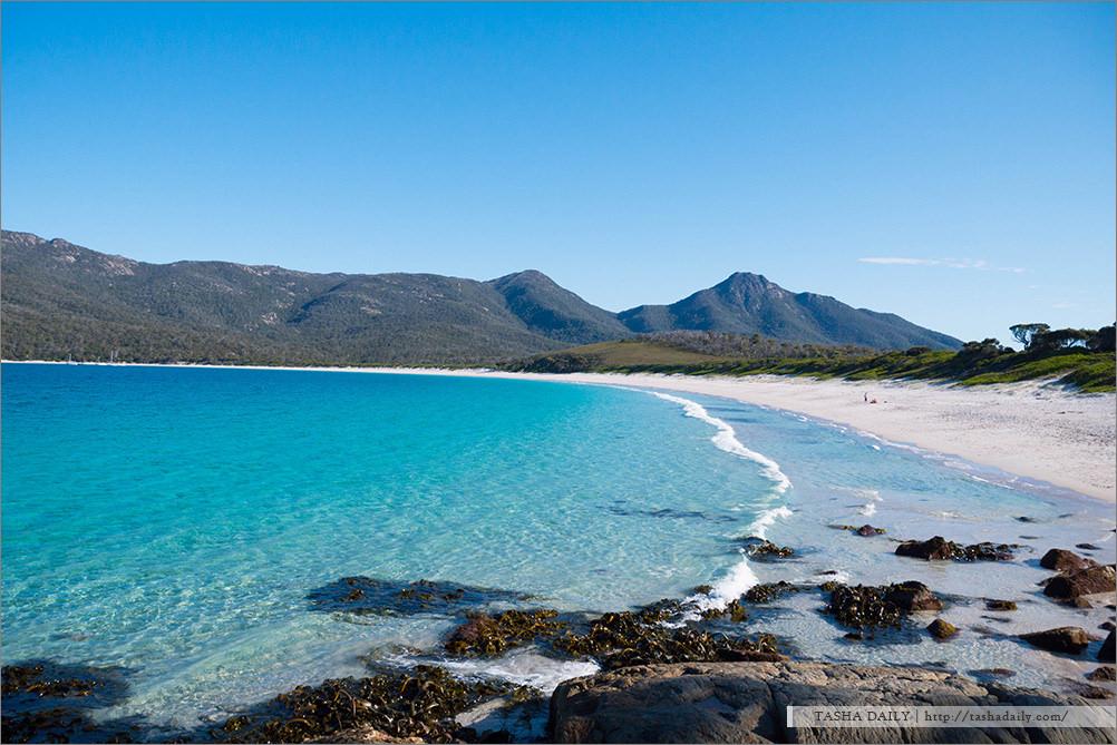 塔斯自由行丨Hazards Beach.親近酒杯灣、健行步道的立志與沙灘海洋的悠閒