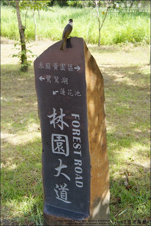 台東森林公園 015.jpg