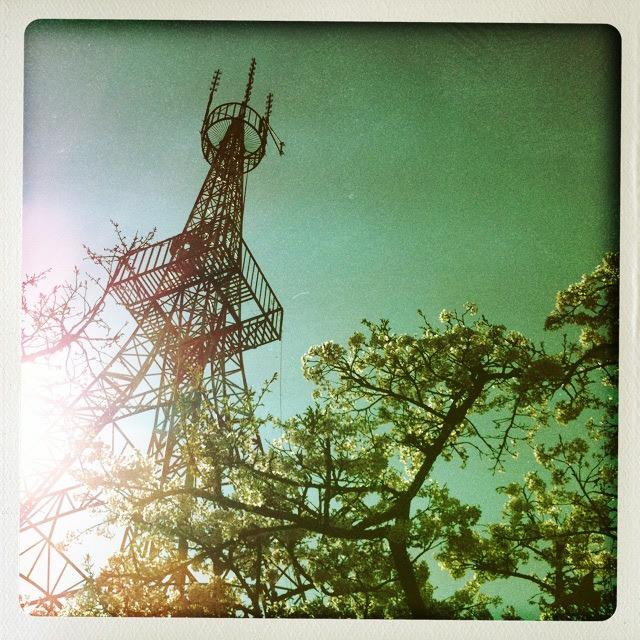App推薦︱輕鬆旅行趣.2012阿里山櫻花季、奮起湖一日遊
